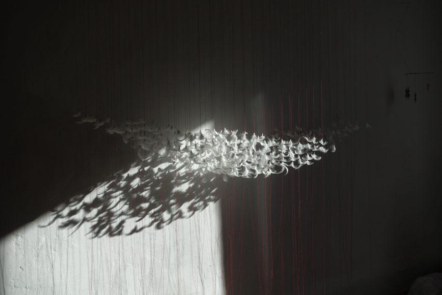 Linéaments  - Helenbeck Gallery Nice